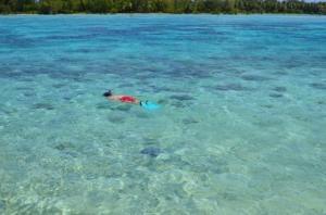 Blue Heaven Island, Лоджи  Бора-Бора - big - 37