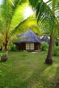 Blue Heaven Island, Lodges  Bora Bora - big - 13