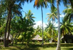 Blue Heaven Island, Lodges  Bora Bora - big - 7