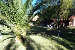 Suter Petit Hotel, Hotels  San Rafael - big - 110