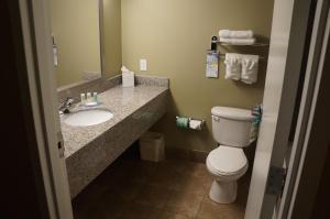 Quality Inn & Suites Near Fairgrounds & Ybor City, Hotels  Tampa - big - 8