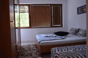Bulhotel Pritzker Apartment, Апартаменты  София - big - 44
