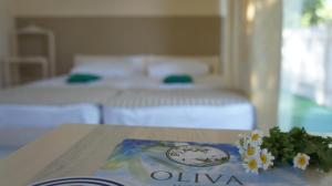 Отель Олива - фото 13