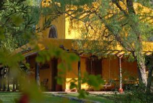 Finca La Encantada, Venkovské domy  San Rafael - big - 34