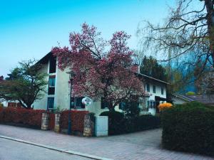 Gästehaus Christa Mauerer, Penzióny  Bad Reichenhall - big - 20