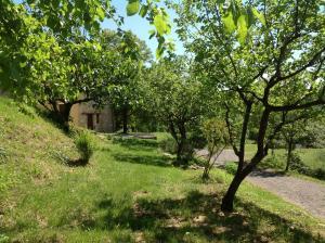 Agriturismo Il Picchio Verde