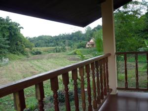 Suancha Tea Garden