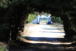 Quinta da Azervada de Cima