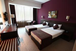 Queen's Hotel, Отели  Скопье - big - 6