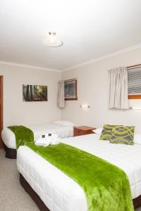 Picton Accommodation Gateway Motel, Motel  Picton - big - 59