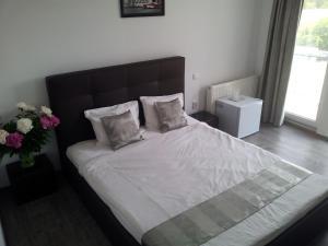Anacris Guesthouse, Pensionen  Costinesti - big - 22