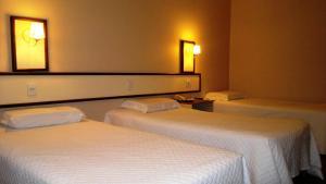 Farina Park Hotel, Отели  Bento Gonçalves - big - 8