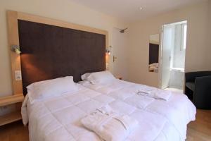 Inter-Hotel du Pont Roupt, Hotely  Mende - big - 9