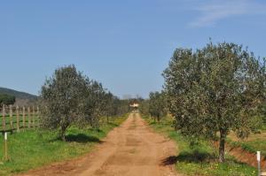 Tenuta Agricola dell'Uccellina, Bauernhöfe  Fonteblanda - big - 116