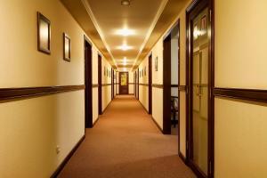 Отель Чичиков - фото 9