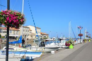Grand Bleu Vacances – Résidence La Grenadine, Курортные отели  Марсейан - big - 28