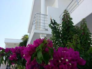 Costa Maya Bodrum - All Inclusive, Hotely  Bodrum - big - 7