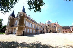 Château d'Island Vézelay, Hotels  Pontaubert - big - 1