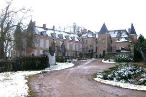 Château d'Island Vézelay, Hotels  Pontaubert - big - 64