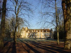 Château d'Island Vézelay, Hotels  Pontaubert - big - 50