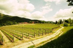 Agriturismo l'Uva e le Stelle, Farmházak  Faedis - big - 29
