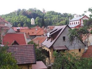 Apartament Wilhelmine, Apartmanok  Brassó - big - 23