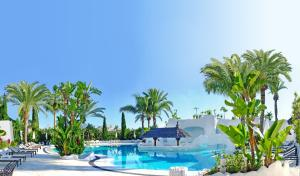 Hotel Suites Albayzin Del Mar, Hotely  Almuñécar - big - 13
