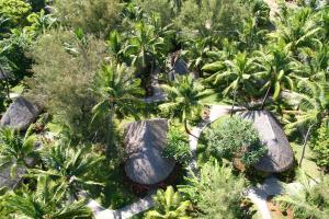 Sofitel Bora Bora Marara Beach Resort, Отели  Бора-Бора - big - 4