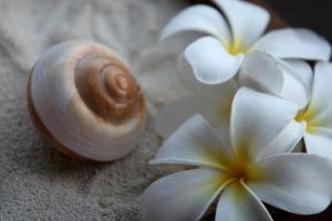 Sofitel Bora Bora Marara Beach Resort, Отели  Бора-Бора - big - 60