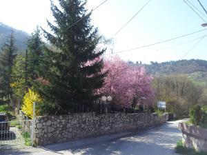 Motel Dom Sarajevo - фото 2