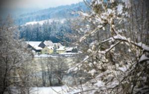Hotel 'Der Seehof'