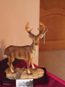 Arisaig Guest House, Panziók  Inverness - big - 6