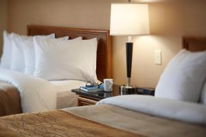 Comfort Inn East Sudbury, Отели  Садбери - big - 31