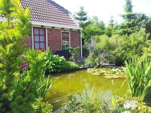 Waddenstee, Prázdninové domy  Westernieland - big - 4