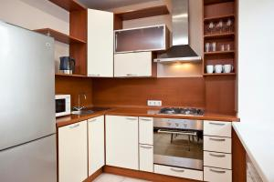 Moscow Suites Apartments Arbat, Apartmány  Moskva - big - 28