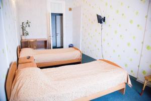 Отель Петропавловский - фото 22