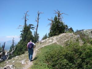 Montagne Rocciose