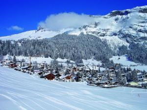 Hotel des Alpes, Szállodák  Flims - big - 53