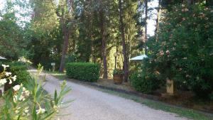 Agriturismo Bellavista, Residence  Incisa in Valdarno - big - 64