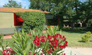 Residence Guardamare, Apartmanhotelek  San Vincenzo - big - 28