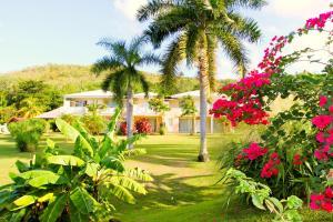 Residence Caribia photos