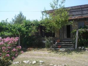 Gokpinar Country Home