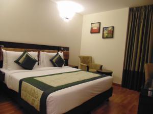 Tavisha Hotel, Hotels  New Delhi - big - 83