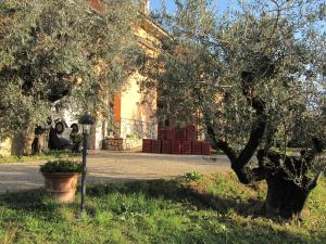 Nearby hotel : B&B Il Barbagianni
