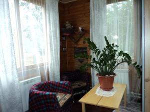 Отель На Цветочной - фото 15