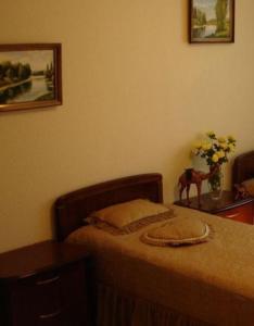 Отель Синай - фото 11