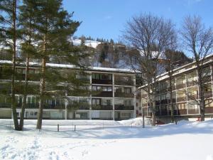 Ferienwohnung Kati, Apartmány  Saalbach Hinterglemm - big - 26