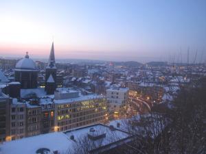 Liège flats, Ferienwohnungen  Lüttich - big - 165