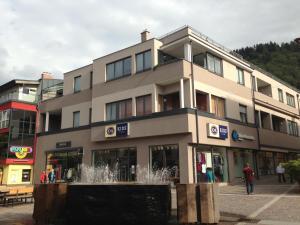 Appartements Tamino - City Appartements, Apartmány  Schladming - big - 80