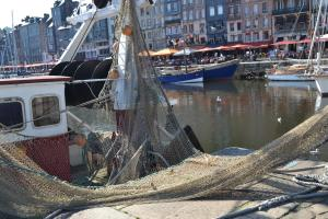 La Chambre du Marin, Bed & Breakfast  Honfleur - big - 20
